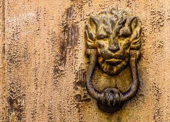 Knocker lion head