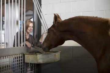 Female stablehand feeding horse through doorway in stables