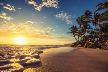 Garden Poster Tropical beach Landscape of paradise tropical island beach, sunrise shot