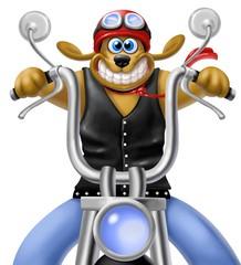 Fototapete - cane in moto