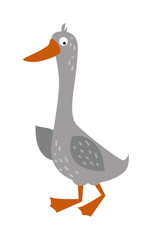 Cartoon goose with big eyes and yellow beak farm animal vector.