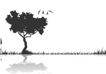 Silhouette Baum und Vögel