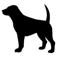 Dog Silhouette Vector EPS 10
