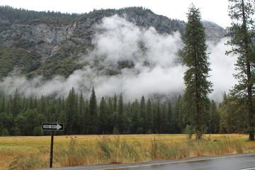 one way road sign at yosemite national park