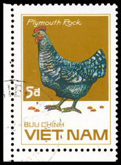 Stamp printed in Vetnam shows Plymouth Rock chicken