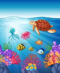 Turtle and fish swimming underwater