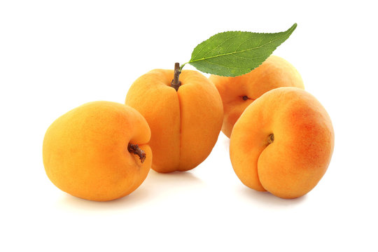 Apricots with leaf isolated on white