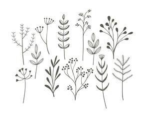 Doodle grass set.
