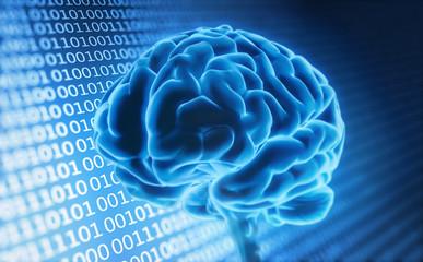 Gehirn und digitale Daten 5