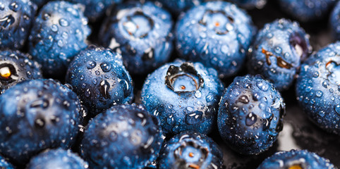 Natural background of fresh blueberries