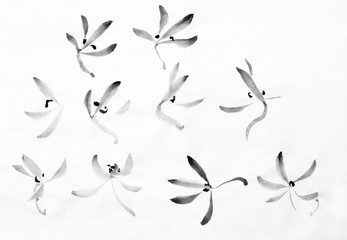 petals of wild orchids