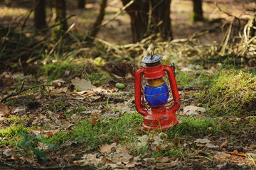 lantern in the forest
