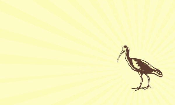 Business card Egret Heron Crane Side Woodcut
