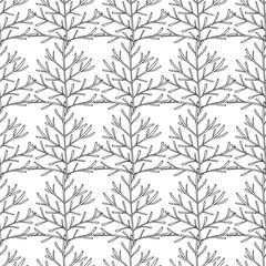 Vector seamless pattern. Linear graphic design. Floral linear background