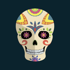 Day of The Dead mexican colorful sugar skull with floral ornament and shadow isolated on dark blue background, vector illustration