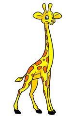 Giraffe cartoon illustration isolated image animal character