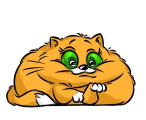 Cat big eyes cartoon illustration isolated image animal character