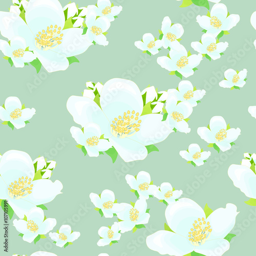 """jasmine Flower Seamless Illustration On Blue Background"