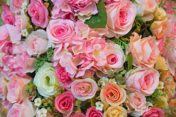 Flowers roses background