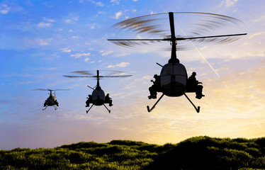 The helicopters
