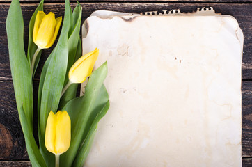 Vintage paper, pencils and yellow tulips on wooden background. Free space for your text.
