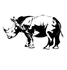 black and white rhino. vector