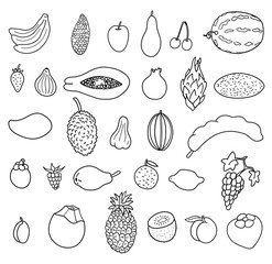 Tropical fruits. Hand drawn collection, vector illustration. Isolated on a white background.