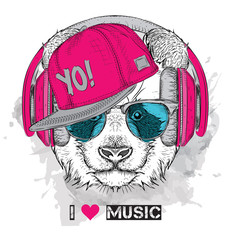 The image of the panda in the glasses, headphones and in hip-hop hat. Vector illustration.