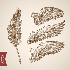 Angel bird wings feather template engraving retro vintage vector