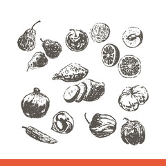 Ink hand drawn fruits and vegetables set