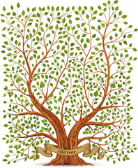 Old vintage tree vector illustration