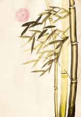 Green bamboo tree and sun