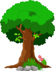 Vector illustration of tree cartoon on white background