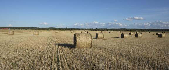 Fält med höbalar