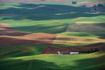 Poster Hill The rolling hills farmland. Palouse Hills in Washington, United State of America.