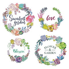 Vector succulent wreaths set