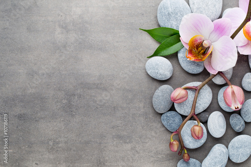 spa orchid theme objects on grey background stock photo and