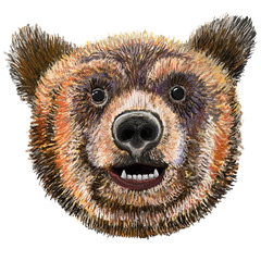 Bear with smile expression,  Grizzly, Kodiak bear isolated raster illustration. Watercolor imitation. Hand painted on tablet.