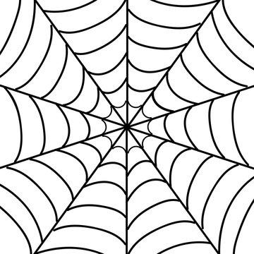 Vector illustration of isolated cobweb