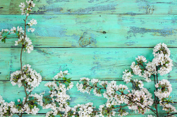 White spring flowers border on teal blue wood background