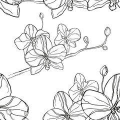 Abstract Seamless Pattern with black orchids flower on White Bac
