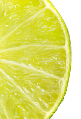 Close up slice of fresh lime on white