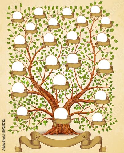 Рисунок 654 рисунки родословне дерево