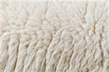 Wool from sheep closeup background