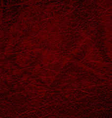 Detailed maroon leather texture background. Vector Illustration. EPS 10.