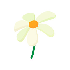 Chamomile icon, cartoon style