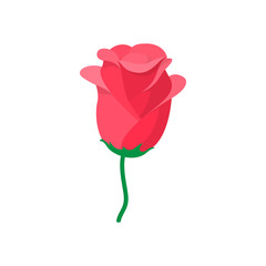 Red rose icon, cartoon style