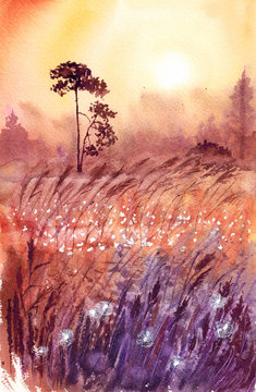 background landscape beautiful sunset in summer field with grass and flowers in a gentle orange and pink coloring by hand drawn watercolor illustration