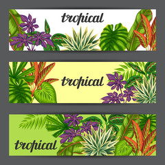 Banners with tropical plants and leaves. Image for advertising booklets, banners, flayers