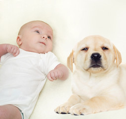 newborn baby and puppy Labrador